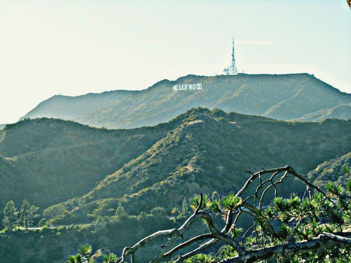 The Traveler - 2015 EyeEm Awards city of angels Hollywood Sign Losangeles Photography