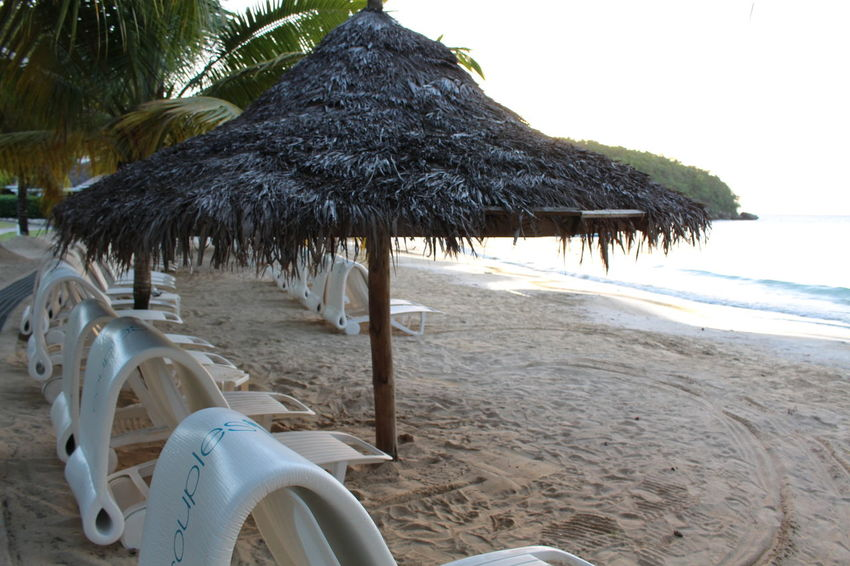 Beach Beauty In Nature Day Nature No People Outdoors Palm Tree Parasol Sand Sea Sky Summer Thatched Roof Tree Tropical Climate Vacations