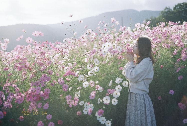 Woman standing on pink flowering plants