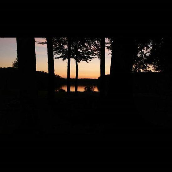 Kinda artsy, right? Sunset Tflers Tagsforlikes Followforfollow Followme Likeforlike Likeitup Artbasel Photography Samsung Gs5 Artsy Lake Trees Colors Sfs