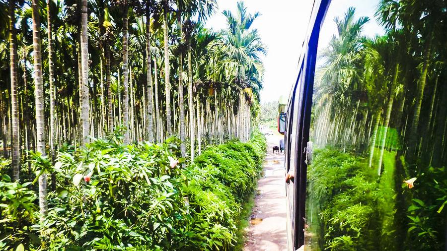 Journey To Mysore..!