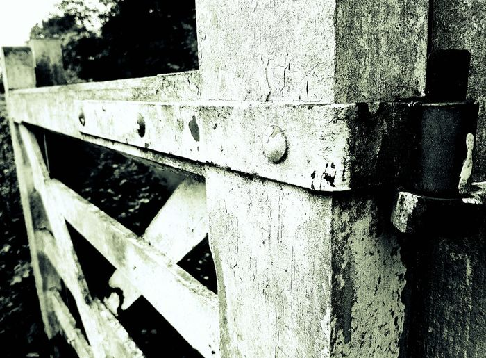 No People Outdoors Close-up Black And White Photography Gate. Ironwork