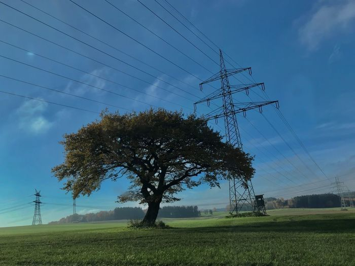 tree connection Oak Cable Electricity  Power Line  Electricity Pylon Power Supply Technology Fuel And Power Generation Tree Landscape Environment Connection
