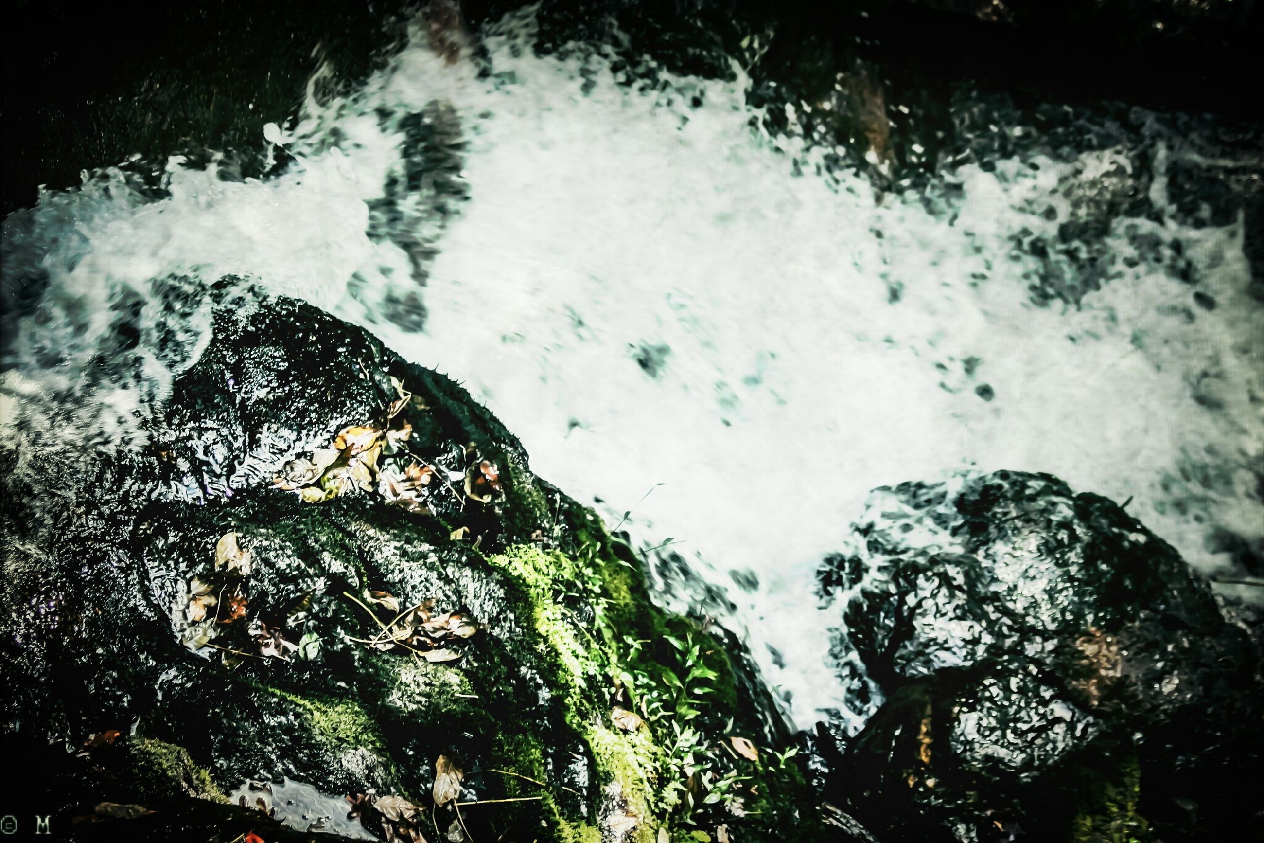water, high angle view, nature, motion, rock - object, beauty in nature, reflection, day, outdoors, no people, flowing water, tranquility, wet, close-up, scenics, moss, river, stream, sunlight, lake