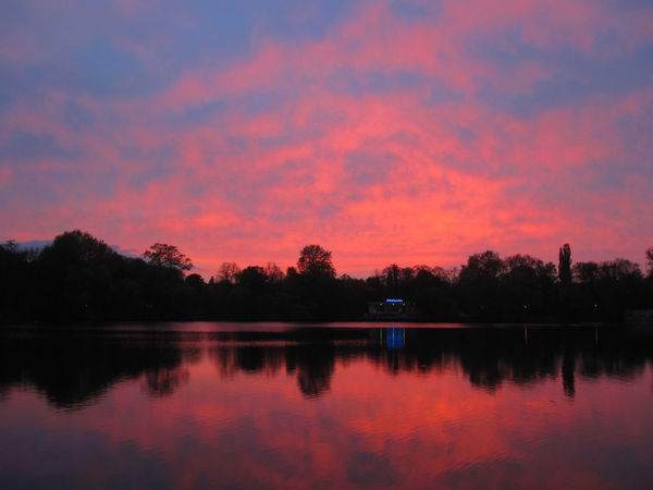 Beauty In Nature Dramatic Sky At Sunset Time Lake No People No Photoshop Outdoors Pink Sky At Sunset Reflection In The Water Scenics Sunset In Berlin Tranquil Scene Tree Silhouette At Sunset Weißer See, Berlin No Filter, No Edit, Just Photography