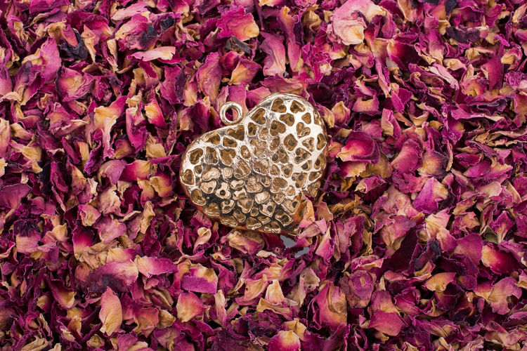 High angle view of heart shape locket on rose petals