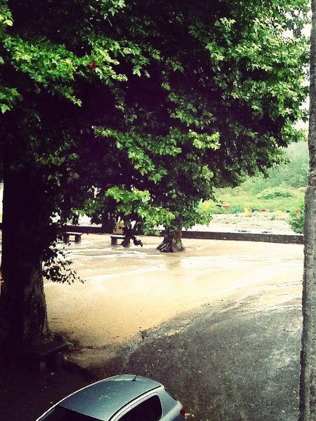 Rainy Day Bowring  I Hate This Weather  Stupid Stuff