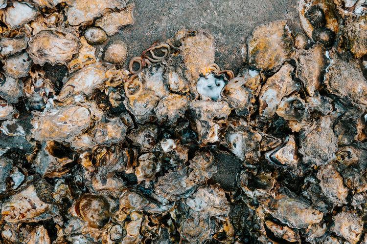 Full frame shot of human hand on rock