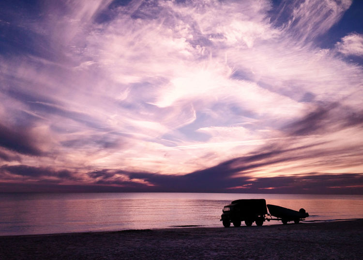Silhouette dog on beach against sky during sunset