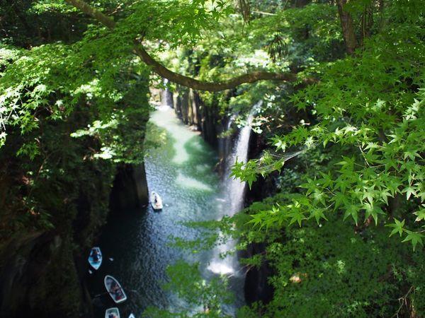 Water River Outdoors Nature Waterfall Tree Green Color Miyazaki, Japan