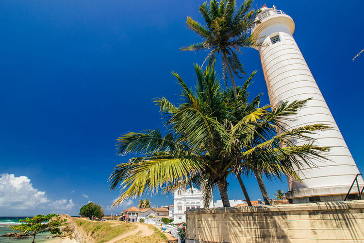 Low angle view of lighthouse by palm trees against sky