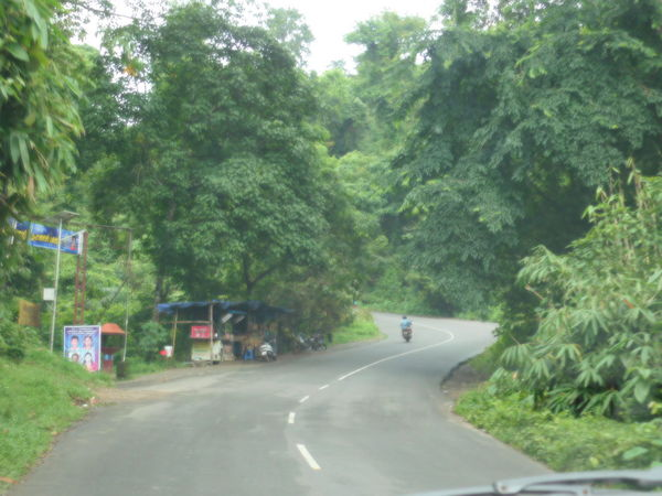 Beautiful Nature Beautiful Roads Way Of Life Day Growth Kerala Kerala The Gods Own Country ;) Nature No People Outdoors Road Road Trip Roadsidephotography Sky The Way Forward Transportation Tree Trees And Nature Way Ahead