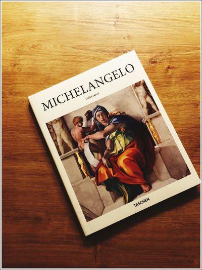 Evening Reading Book Michelangelo Art Indoors