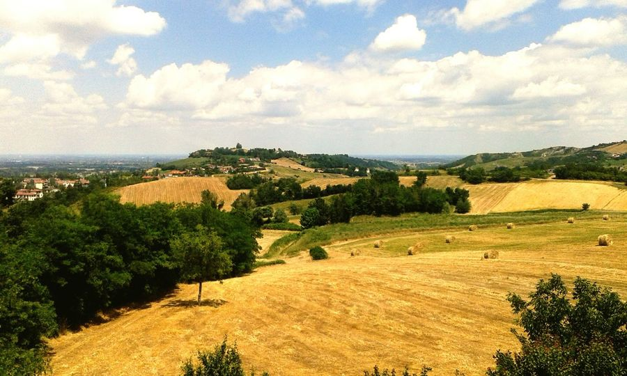 Provincia Parma Campi Fieno Natural Beauty Nature