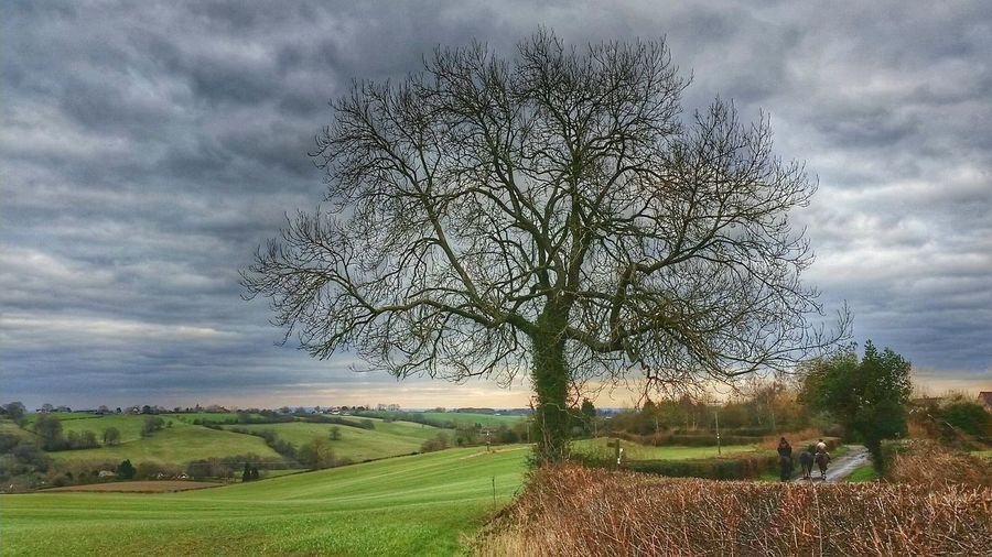 "The English Country Lane ...""Perhaps this is the path my ancestors walked, where a lonely shepherd dreamt, where lovers talked. I feel their spirits wander by, as we journey unseen together..."" (Chris Plows) English Countryside Country Lane Naturelovers EyeEm Nature Lover Connected With Nature Hugging A Tree Country Landscapes Tadaa Community Countryside Farmland Eye4photography  EyeEm Gallery Anti Cool Malephotographerofthemonth England 🌹"