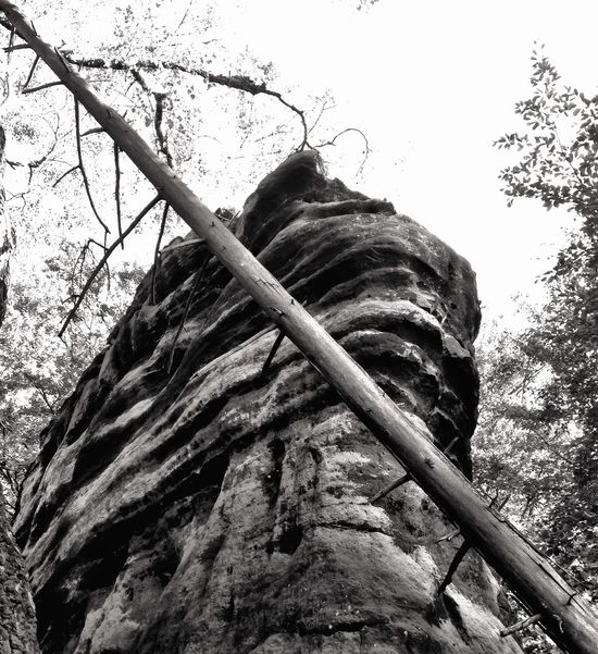Nature Erosion Look Up