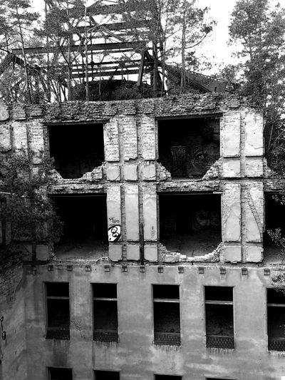 Black And White Bunker Ruins Ruins Architecture Ruined Building Ruine Tree Window Architecture Building Exterior Built Structure Closed Door Abandoned Bad Condition Front Door Ruined Run-down Damaged