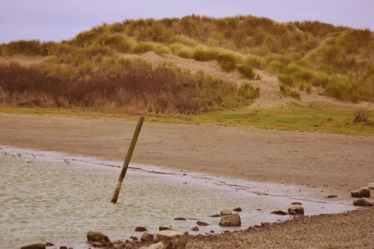 Sand Nature Beach Outdoors Beauty In Nature Digital Photography Crosby Beach Liverpool Photography Taking Photos Warm Warmlight Sand Dune
