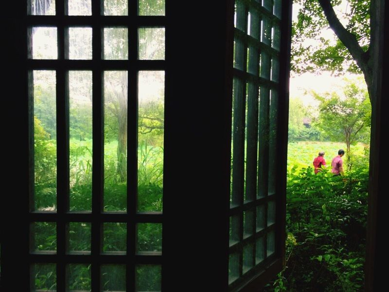 Window Silhouette Close-up Building Exterior Geometric Shape Day Window Frame Green Color Outline Full Frame Rectangle Green Colour Of Life Scenics Taking Photos Eyeem 位于Hangzhou /China