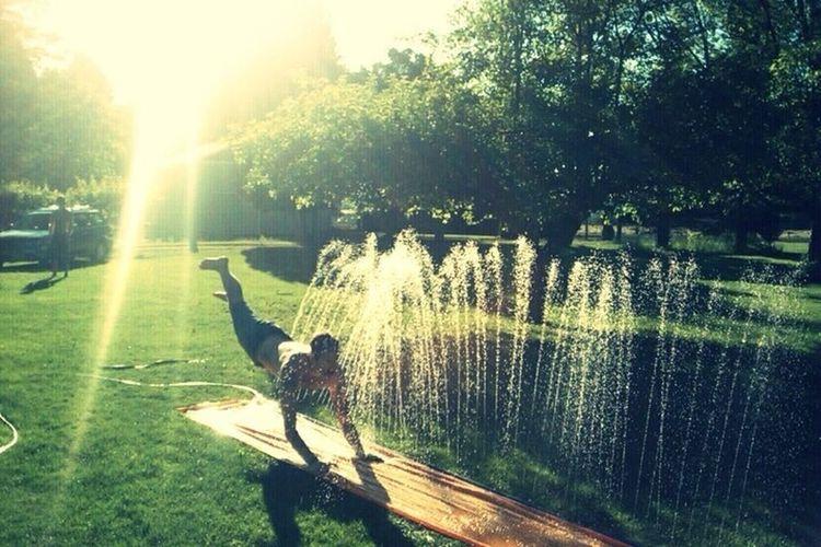 Summertime Sunnydelight