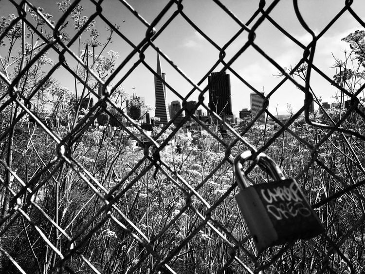 My City Chainlink Fence Security No People Outdoors Architecture Blackandwhite Shootermag Fine Art Photography Bw_collection EyeEm Best Shots California San Francisco