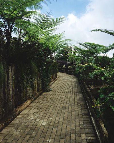 Walk trough