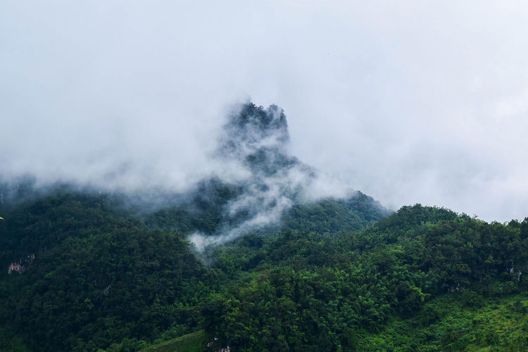Nature Photography Beauty In Nature Cloud - Sky Day Environment Green Color Growth Landscape Mountain Nature Nature_collection Naturelovers Naturephotography Plant Scenics - Nature Sky Smog Tree