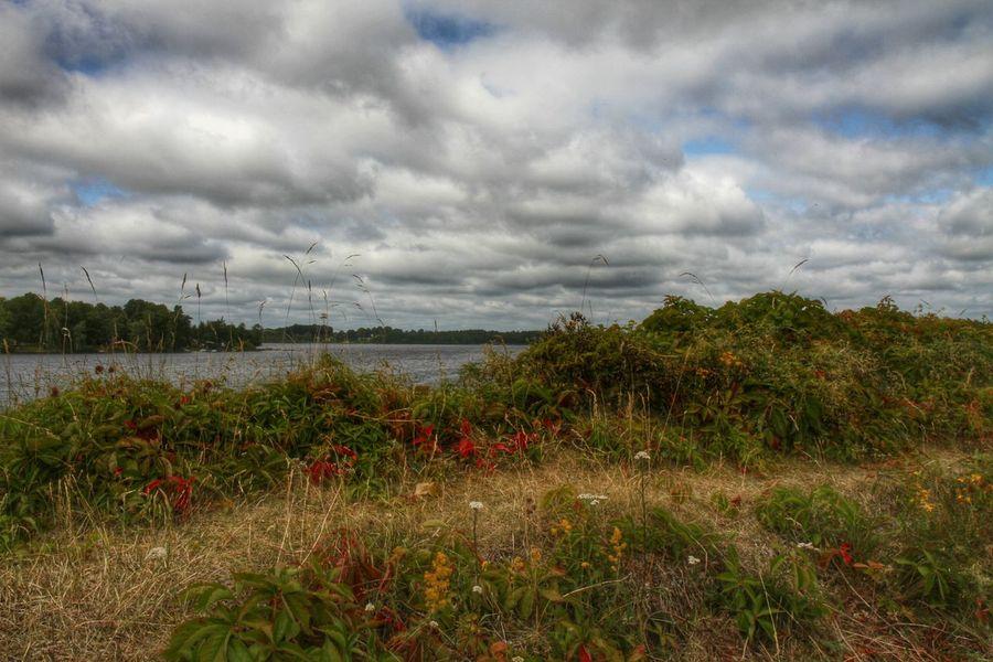 EyeEm Nature Lover Landscape EyeEm Best Shots Växjö