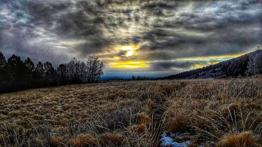 morning rise Sunrise Colorado Photography Landscape_photography Merica Murica America 11k Park County Cloud - Sky Dramatic Sky Nature Sky Landscape Field Scenics Outdoors Beauty In Nature Tranquility No People EyeEmNewHere