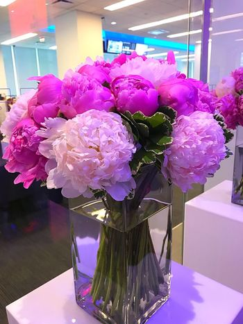 Flower Vase Indoors  Pink Color Bouquet Flower Arrangement Table Purple No People Petal Flower Head Fragility Orchid Peony  Nature Beauty In Nature Freshness Close-up Day Bloomberg Building