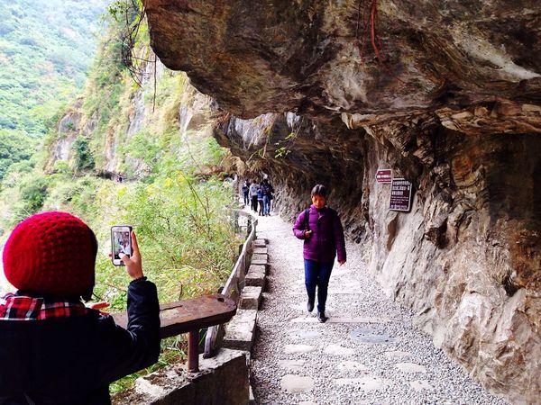 步道入口 Trail Plank National Park