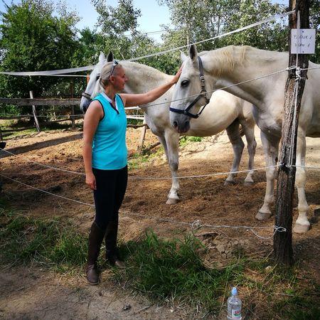 Tree Full Length Childhood Horse Sky Livestock Horseback Riding