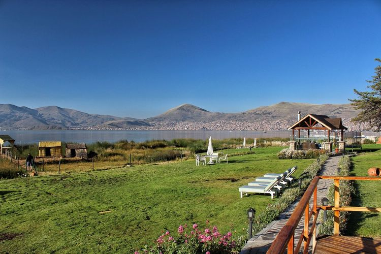 view of Puno and Lake Titicaca. Partener Selection Titicaca Lake Water Mountain Flower Clear Sky Sky Animal Themes Grass Landscape