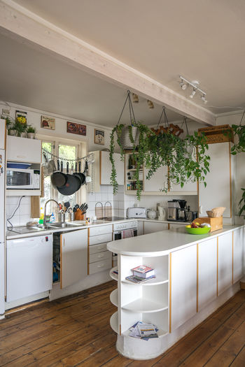 AirBnB Ceiling Design Electric Light Growth Home Houseplant Indoors  Interior Interior Design Large Group Of Objects Modern Patio Potted Plant Shelf