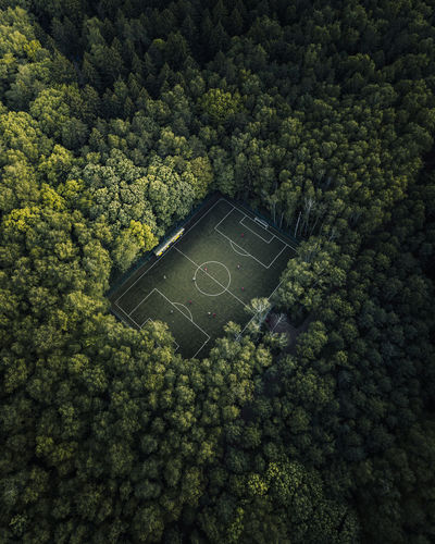 Football field in the woods