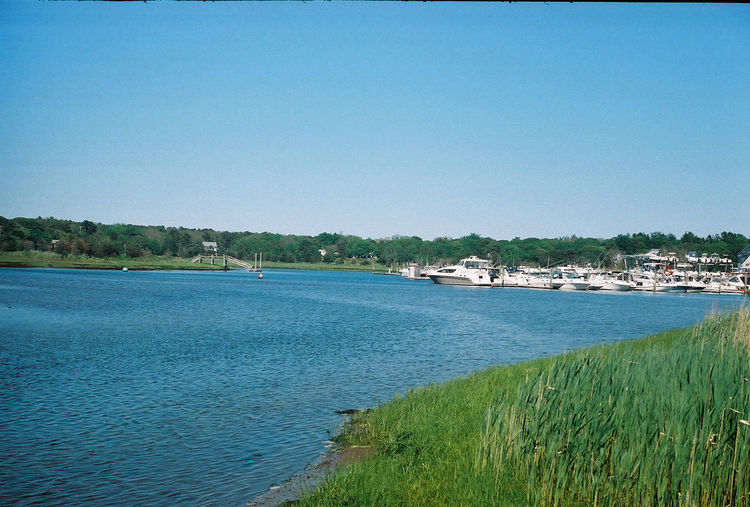 Blue sky over the harbor on Cape Cod, Massachusetts. Captured with a Leica ii on 35mm Fujifilm. Beauty In Nature Blue Calm Cape Cod Clear Sky Coastline Day Grass Growth Idyllic Massachusetts Nature New England  No People Non-urban Scene Outdoors Plant Rippled Scenics Summer Tranquil Scene Tranquility Travel Destinations Tree Water