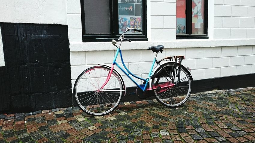 I Want To Ride My Bicycle Colorful Bike of a Student of the University of Maastricht Easy to Recognise (c) 2016 Shangita Bose All Rights Reserved Up Close Street Your Design Story My Commute Need For Speed On The Way Urban Geometry CyclingUnites