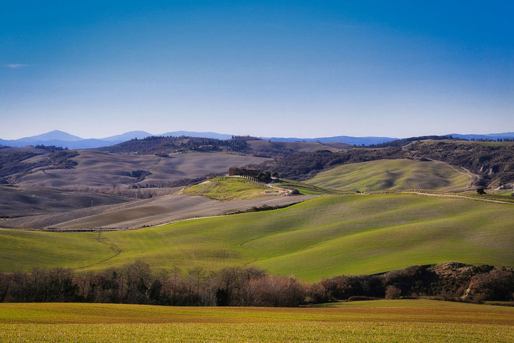 Val D 'Orcia Hills And Valleys Mountains Background Farm Cypress Trees  Landscape Scenics - Nature Beauty In Nature Land Sky Field Grass Non-urban Scene Rolling Landscape Mountain Idyllic Outdoors Green Color Tranquility Nature Travel Destinations