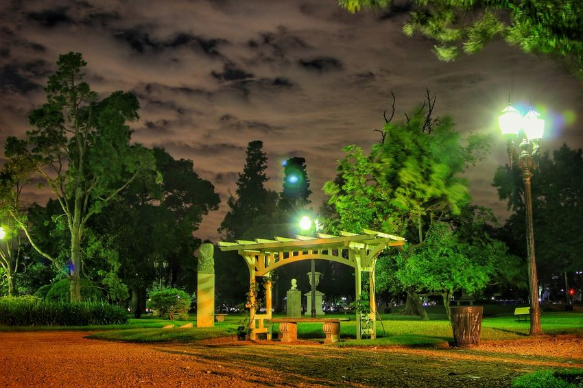 Night Rose Nubesdetuciudad Tormenta Diadelluvia Lluvia Canon Canonista Canon😉 Canonphoto Igers Ig_latinoamerica_ Igersargentina AI Now! EyeEmNewHere Nightphotography Light And Shadow Long Exposure Night Lights Rosedal Buenos Aires Palermo Buenos Aires Buenos Aires, Argentina  Night Illuminated Tree Green Color Park - Man Made Space Christmas Lights Spraying Outdoors No People