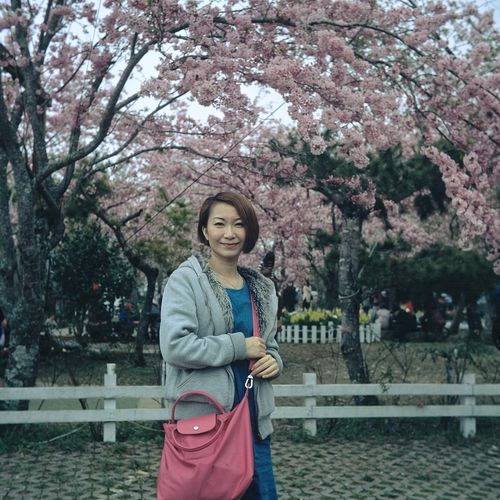 Portrait of smiling woman standing against cherry blossoms on tree
