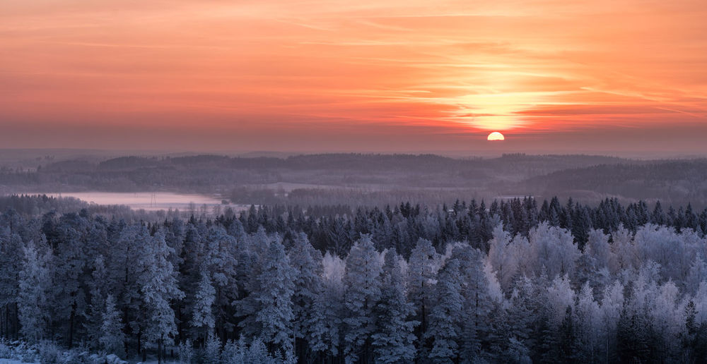 Scenic winter landscape with sunset and frosty tree at evening time in Finland. Finland Frost Landscape_Collection Sunlight Sunset_collection Winter WoodLand Beauty In Nature Cold Cold Temperature Forest Idyllic Landscape Mood Nature Outdoors Scenics Sky Snow Sun Sunrise Sunset Tranquil Scene Tranquility Tree Shades Of Winter The Great Outdoors - 2018 EyeEm Awards