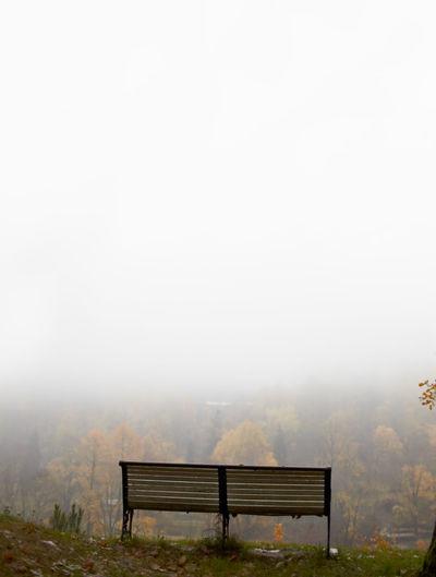 Empty bench on field in foggy weather