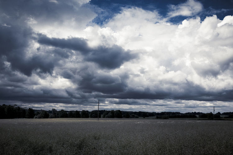 Scenic view of field against cloudy sky Rural Scene Cloud - Sky Sky Cloudscape Storm Nature Landscape Weather Overcast Outdoors Dramatic Sky Scenics No People Blue Dark Field Thunderstorm Non-urban Scene Tree Grass Environment Scenics - Nature Beauty In Nature Tranquil Scene Land Tranquility Plant Day Ominous