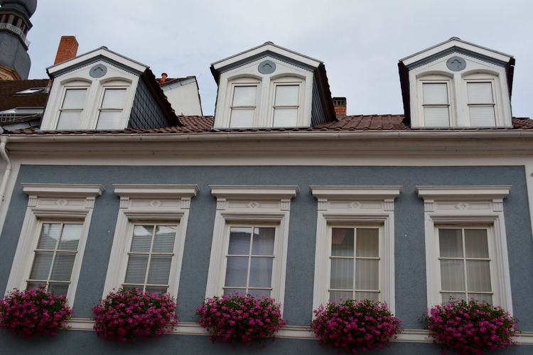 Colors Nikon D5200 Plants Speyer, Germany Architecture Building Exterior Built Structure Day Floor Flowers No People Outdoors Palette Colors Similarity Sky Uniformity Window Focus On The Story