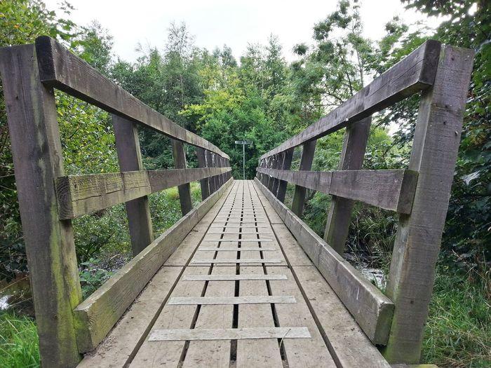Bridge of size