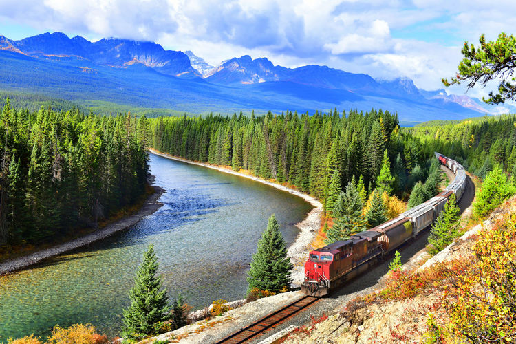 Train passing famous Morant's curve at Bow Valley in autumn ,Banff National Park, Canadian Rockies,Canada. Transportation Mountain Scenics - Nature Mode Of Transportation Beauty In Nature Plant Water Day Mountain Range Tree Non-urban Scene Nature Sky No People Tranquil Scene Cloud - Sky Motor Vehicle River Tranquility Outdoors Alberta Canada Railway Travel Banff National Park  Canadian Rockies  Locomotive Train Canadian Pacific Railway Bow Valley Parkway Curve