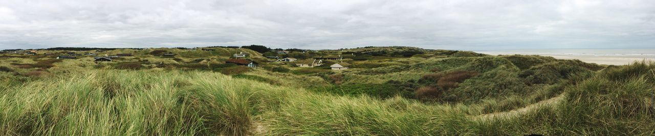 Dunes In Denmark Sky Grass Nature Panorama Field Dunes Cloud - Sky Beauty In Nature Holiday Cottages Holiday Landscape No People Tranquil Scene Day North Sea