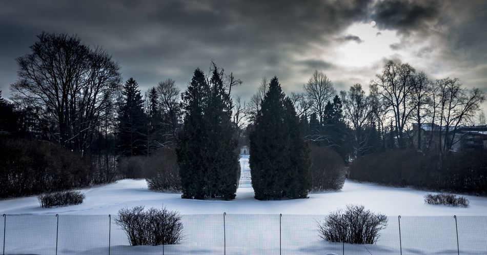 Mansions park at Finland Tree Snow Sky Winter Cloud - Sky Cold Temperature Nature Beauty In Nature No People Outdoors Day