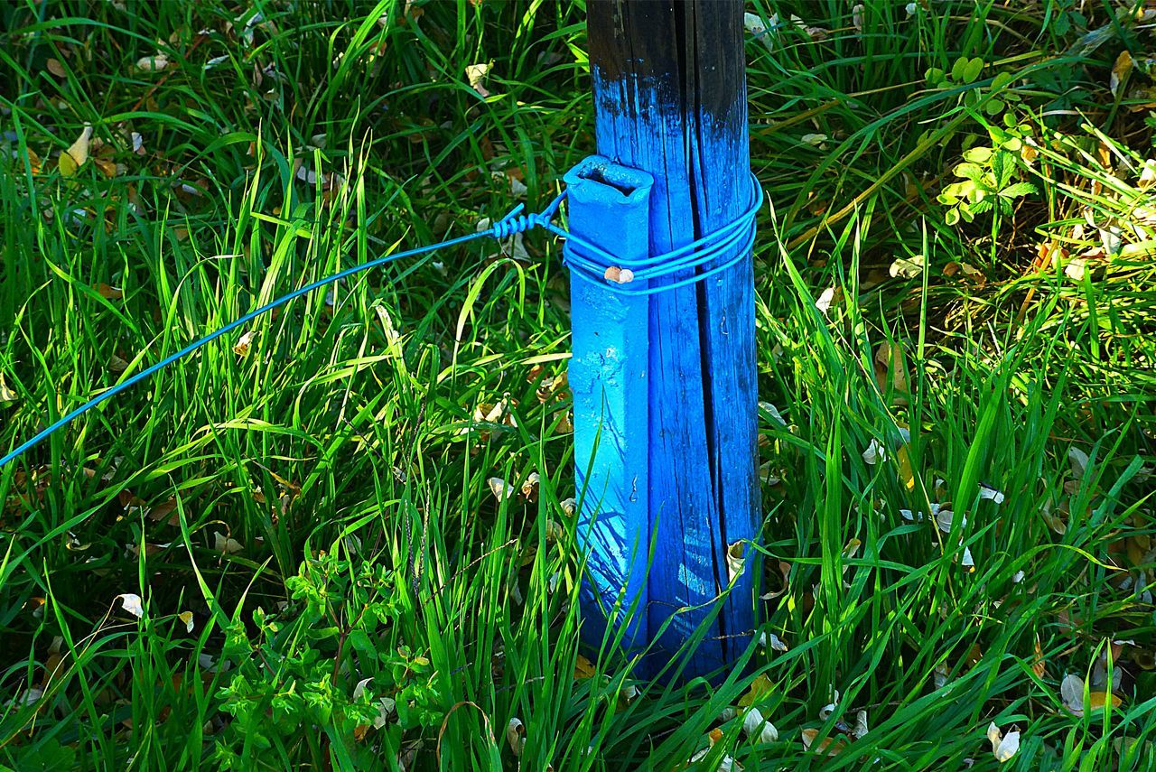 High Angle View Of Blue Wooden Post On Grassy Field