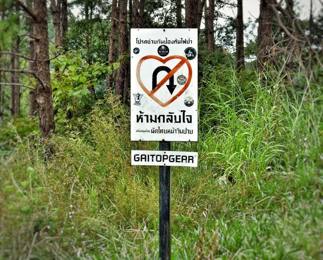 Sign Close-up Warning Sign Road Sign Communication Text No Uturn Life Is A Journey Decisions Heart Spotted In Thailand Feeling Sad The Drive. The Drive